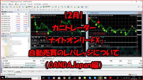 カニトレーダーナイトオンリーFX自動売買