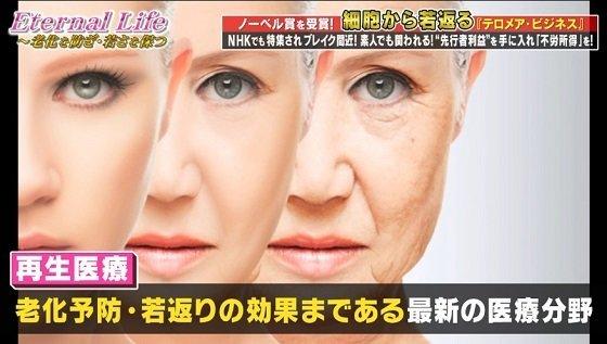 蝶乃舞テロメアビジネス再生医療